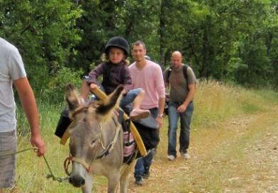 Balade avec un âne bâté