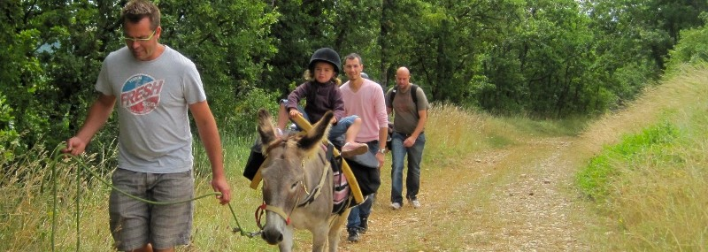 Balades avec un âne bâté