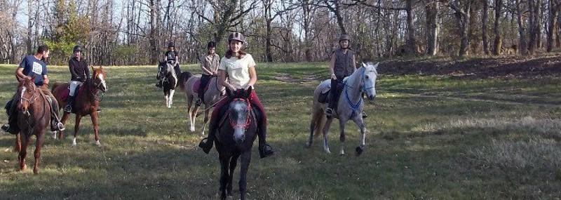 Balades et randonnées équestres