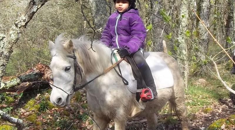 Découvrir le poney et l'équitation