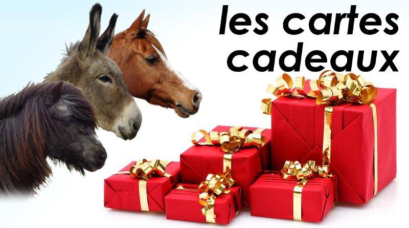 Cartes cadeaux cheval, poney ou âne