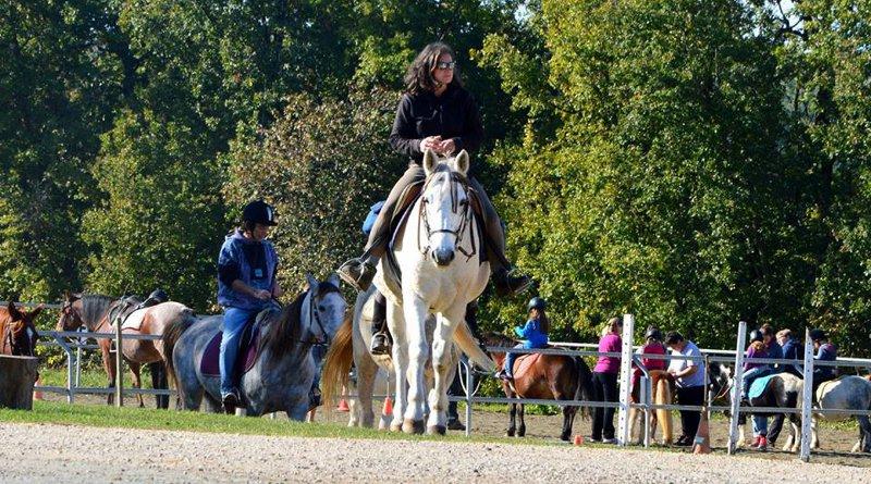 Balades & randonnées à cheval et poney